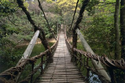 Tokyo hiking tour; Hiking in Tokyo can lead to some fantastic adventures!