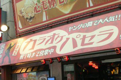 Karaoke Guide