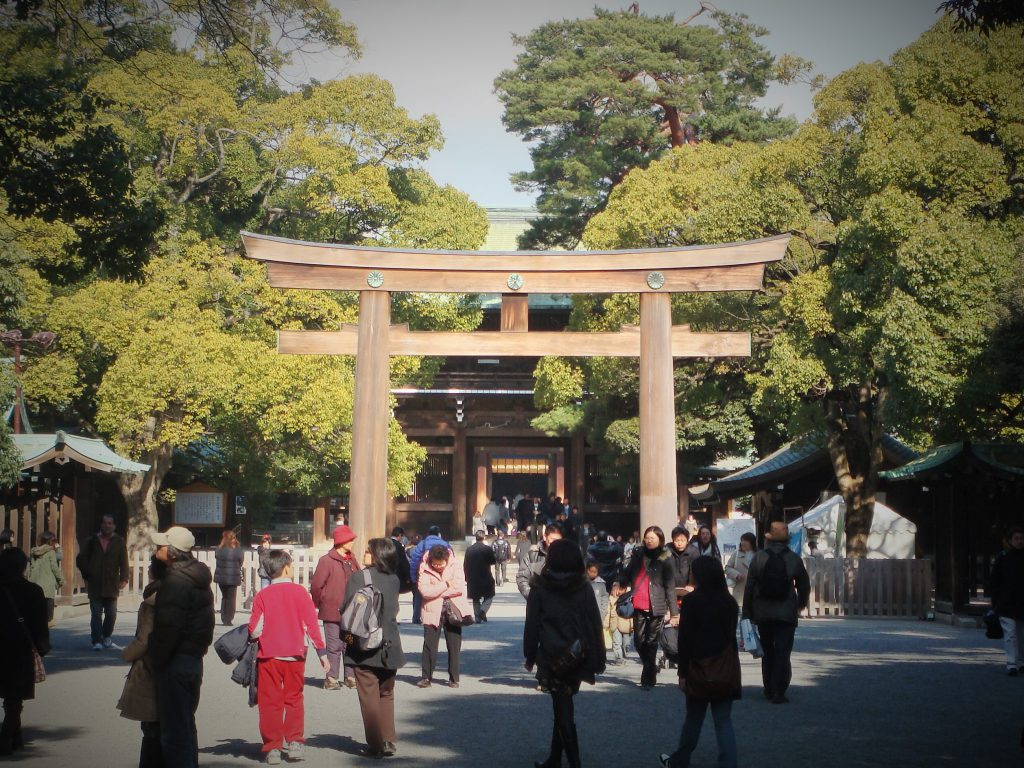 Meiji Jingu seen on Maction Planet Tokyo Walking Tour