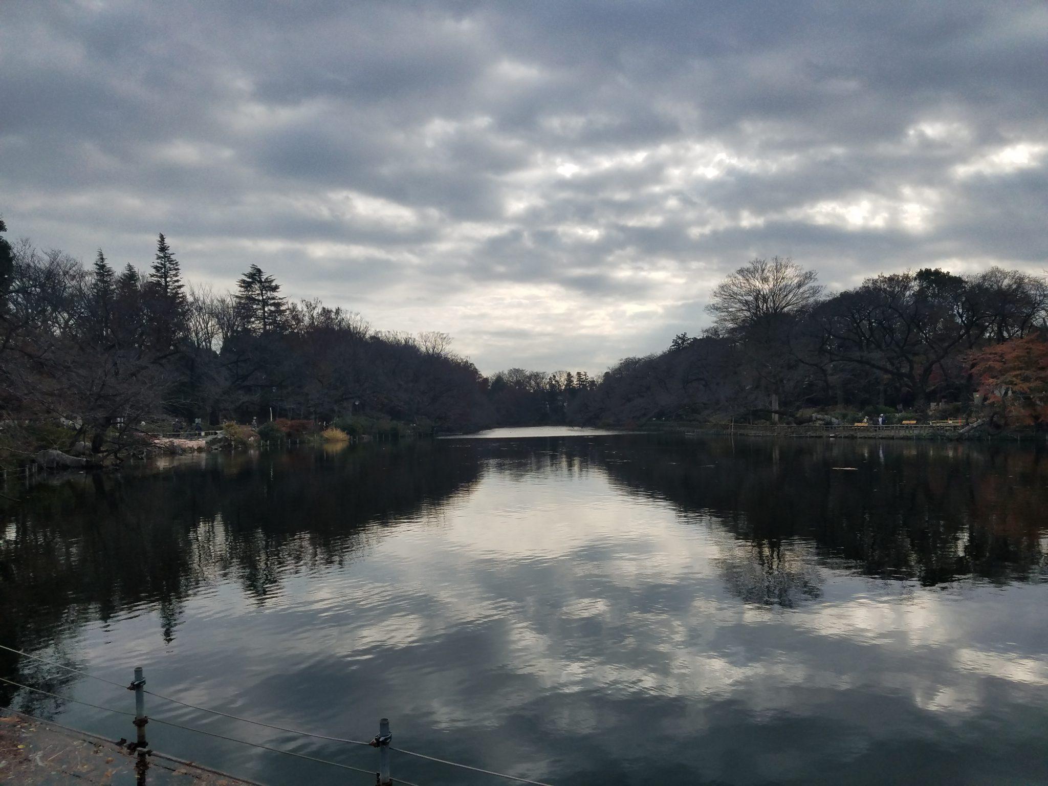 Inokashira Park Kichijoji reflections