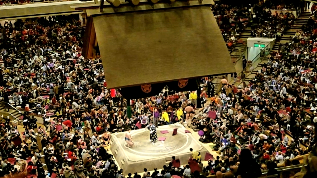 Hakuho loses to Tamawashi and Zabutons fly: 24 January 2019 in Ryogoku Kokugikan