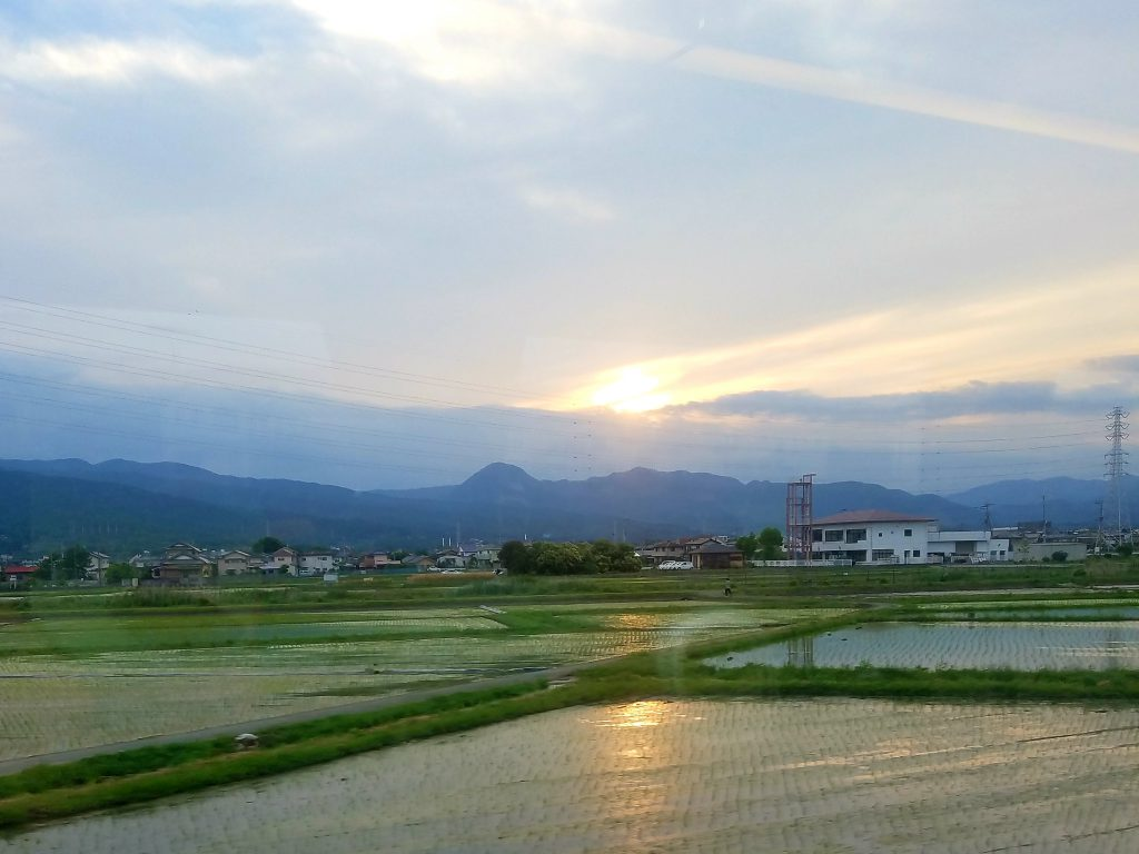 Sunset over the rice paddies of Kanagawa