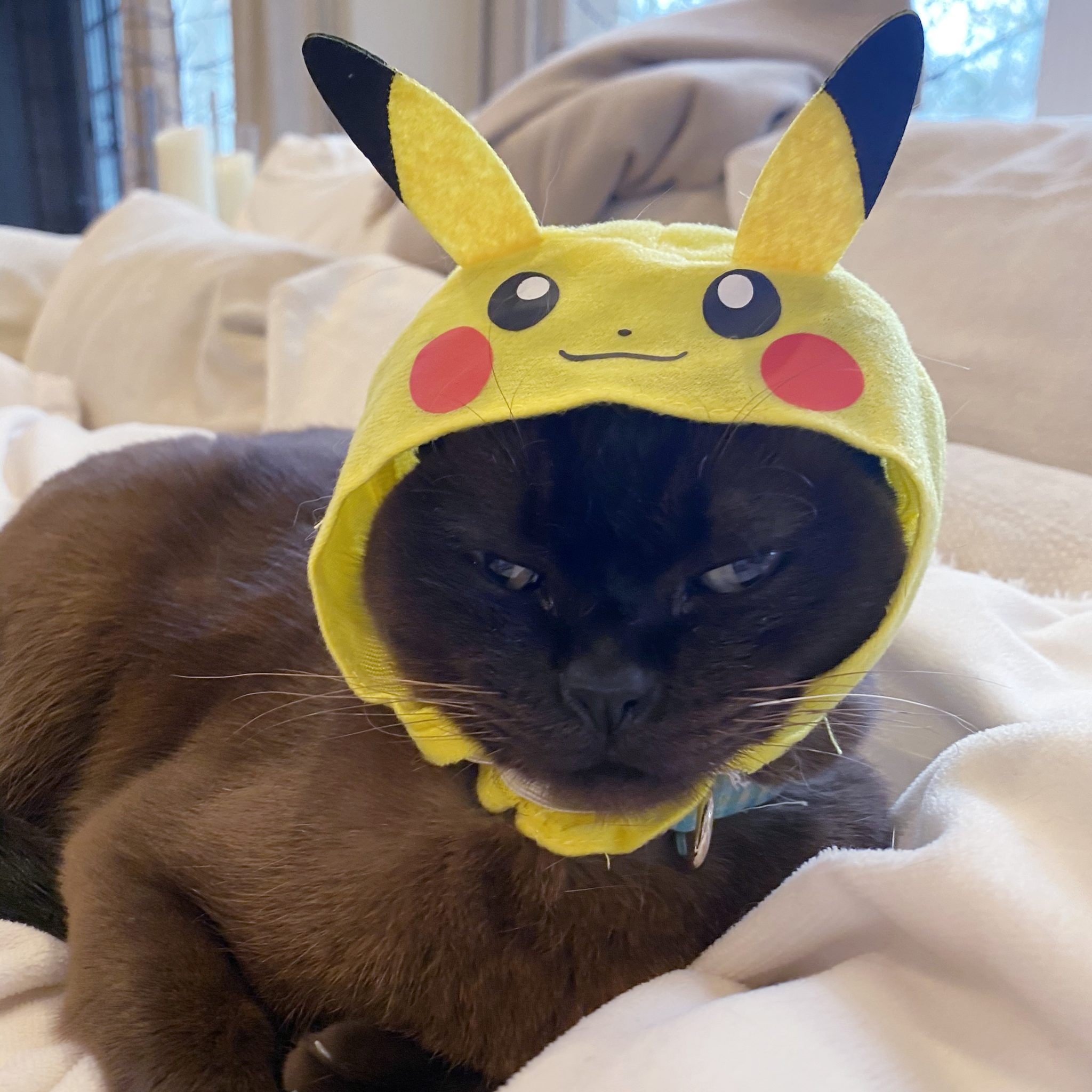 Ella wearing a Pokemon Pikachu Cat Hat purchased on a Maction Planet Tokyo Tour