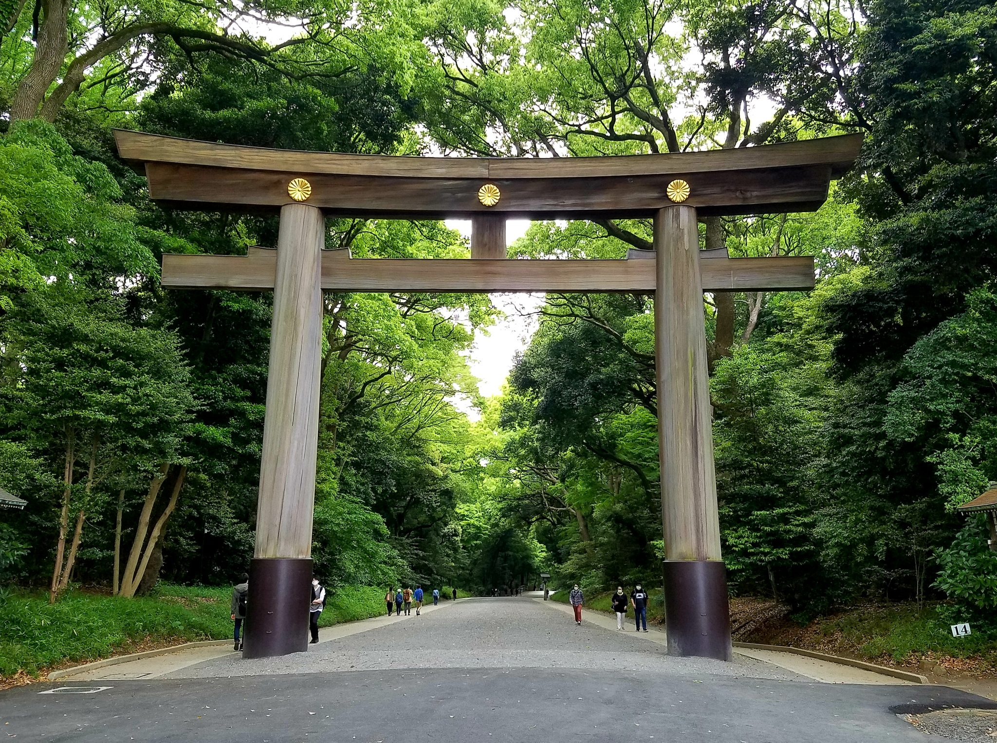 Meiji Jingu Torii Shrine Gate empty due to novel coronavirus COVID-19 on Saturday 9 May 2020