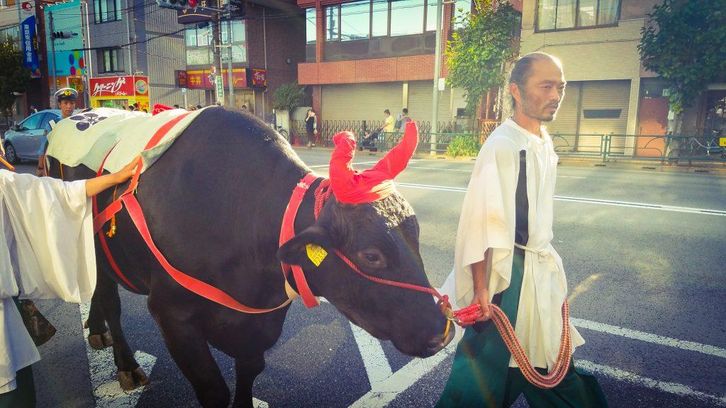 Bull at 2018 Kameido Tenjin Matsuri in Tokyo