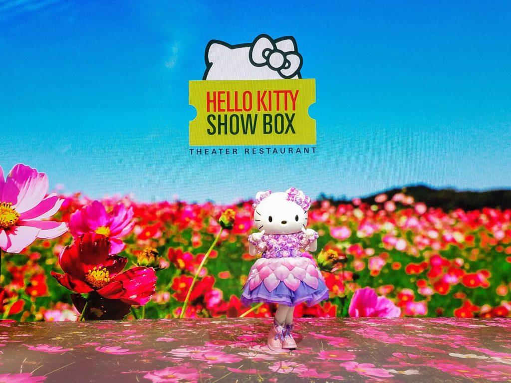 Hello Kitty Show Box