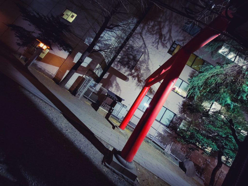 Torii at night at the Hanazono Shrine