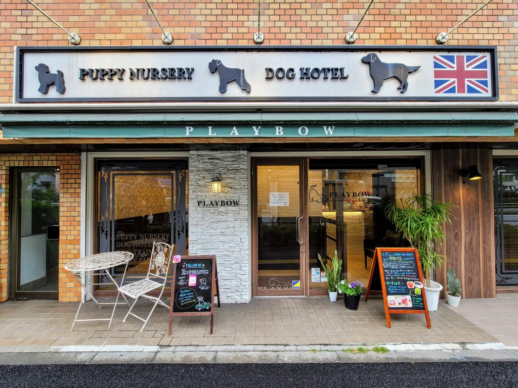 Playbow Puppy Nursery and Dog Hotel in Nakameguro, Tokyo