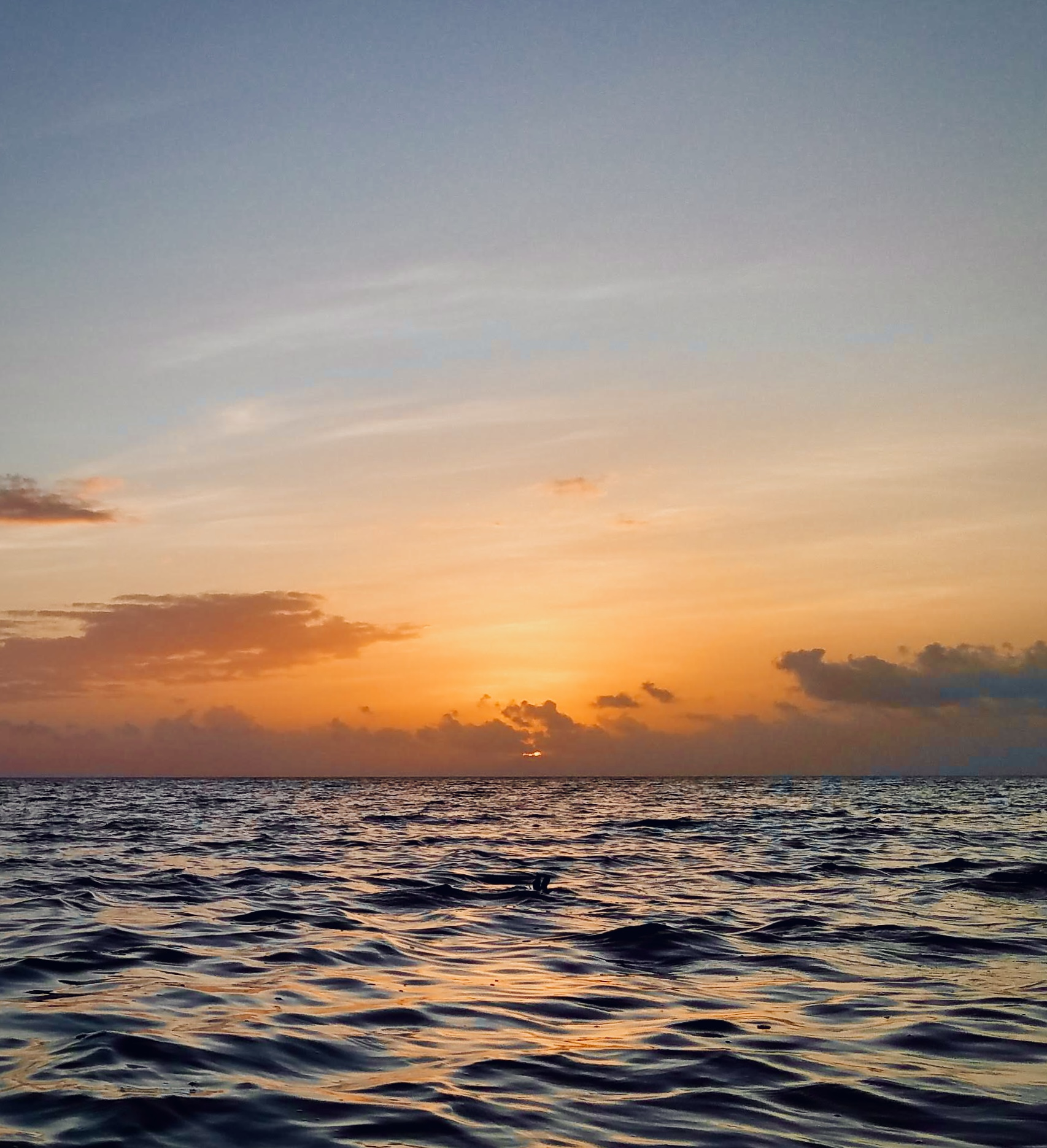 Tokyo ON #072: A New Day: Sunrise from Canoe on Iriomote Island