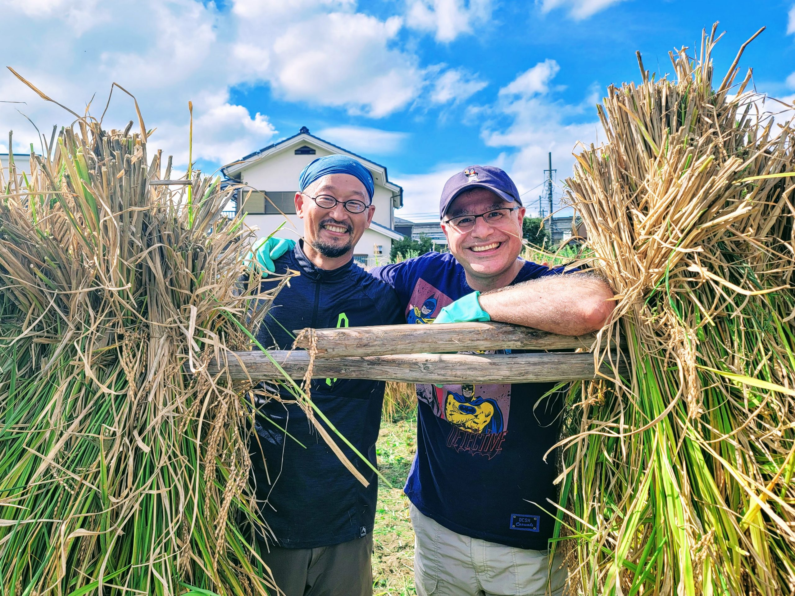 Rice harvesting with Baba-san